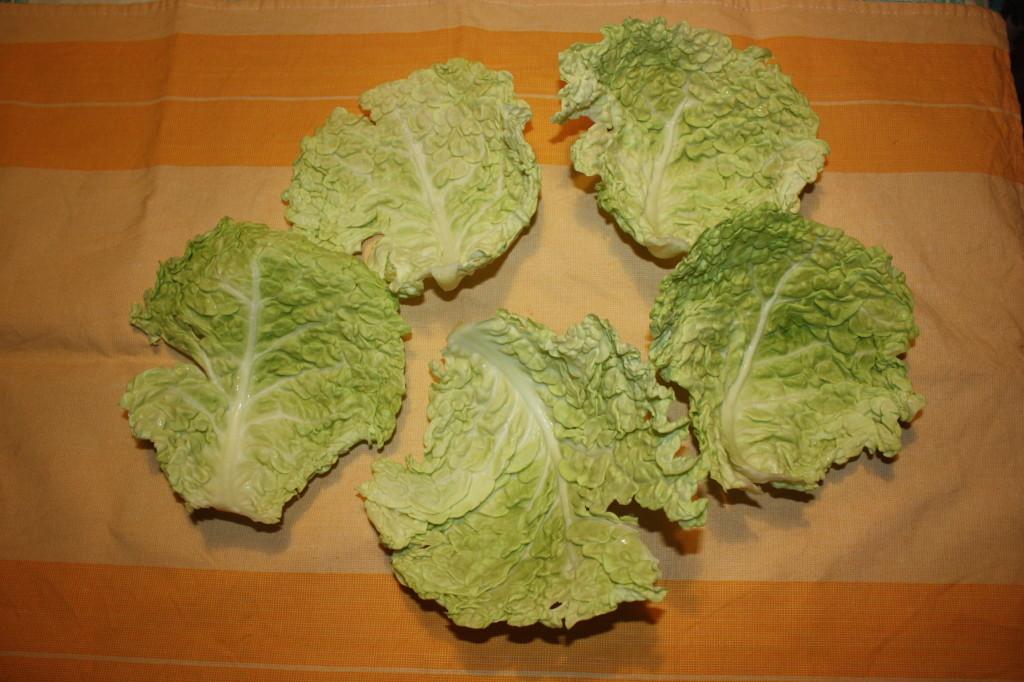 rotolini di verza ripieni - selezionare le foglie