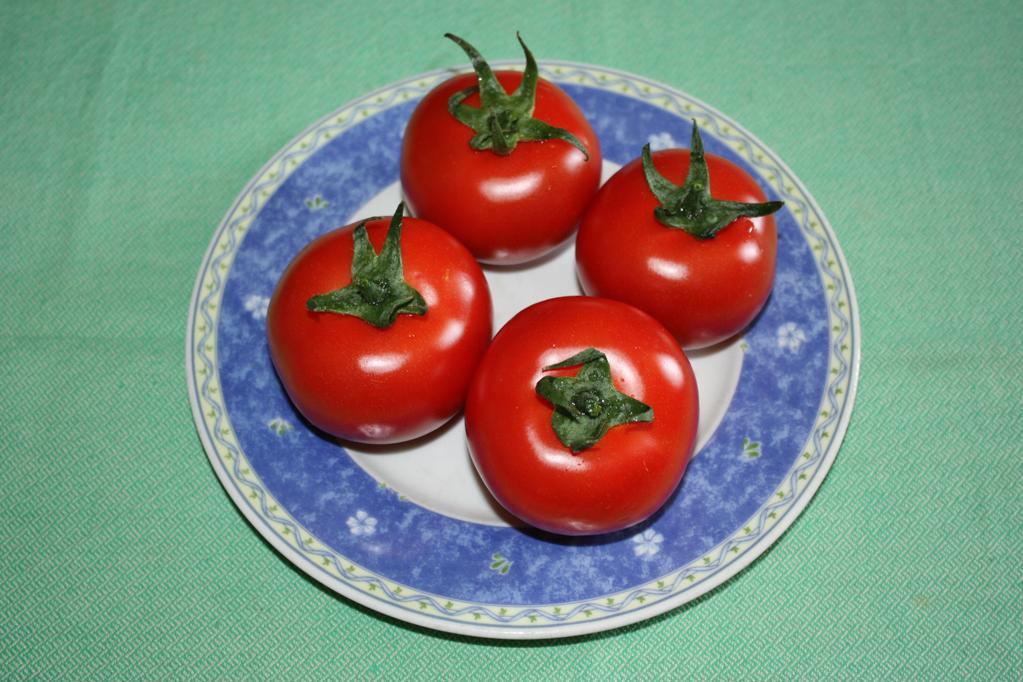 pomodori ripieni - lavare i pomodori